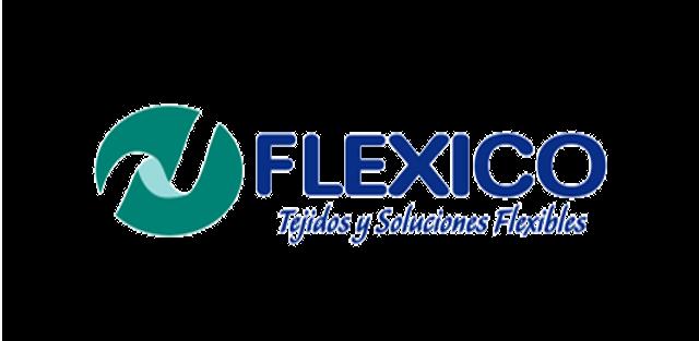 Logo_flexico