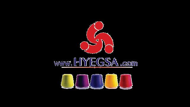 Logo_hyegsa